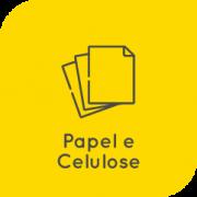 05-papel-celulose